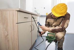 Pest Control Worker Spraying Pesticides